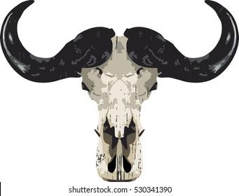 Buffalo skull- vector illustration, white design