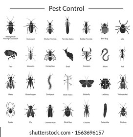 Bug of insect pest control vector black set icon.Vector illustration insect beetle. Isolated black icon pest of bug and fly beetle.
