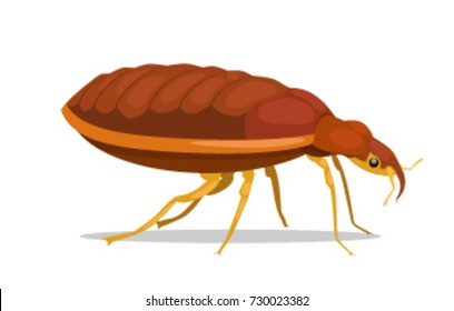 Bug. Vector illustration