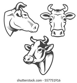 Bull head emblem isolated on white background. Design element for logo, label, sign, brand mark. Vector illustration