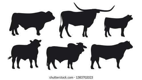 Bull isolated on white. Black silhouette cow. Hand drawn vector illustration.