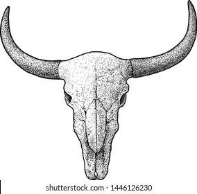 Bull skull illustration, drawing, engraving, ink, line art, vector