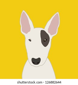 Bull terrier, The buddy dog