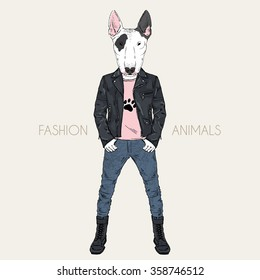 bull terrier doggy dressed up in punk style, hipster animal, furry art illustration