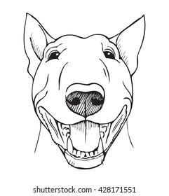 Bull terrier, bull terrier funny face, black and white vector illustration
