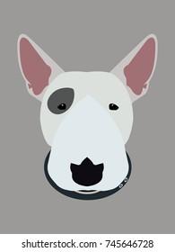 Bull terrier vector illustration.