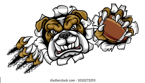 A bulldog angry animal sports mascot holding an American football ball and breaking through the background with its claws