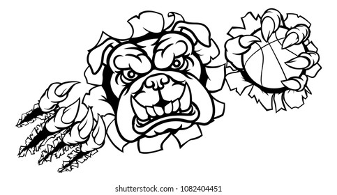 A bulldog angry animal sports mascot holding a basketball ball and breaking through the background with its claws