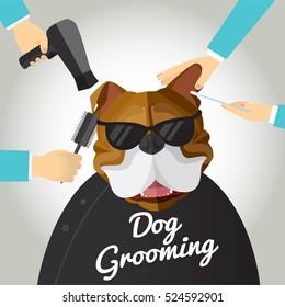 Bulldog getting groomed at pet grooming salon.