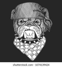 Bulldog Hand drawn vintage image for t-shirt, tattoo, emblem, badge, logo, patch