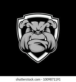 Bulldog head cartoon with shield vector design