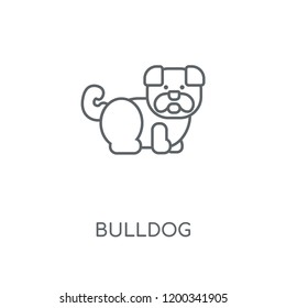 Bulldog linear icon. Bulldog concept stroke symbol design. Thin graphic elements vector illustration, outline pattern on a white background, eps 10.