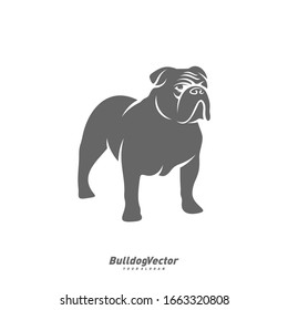 Bulldog logo design vector template. Silhouette of Bulldog design illustration