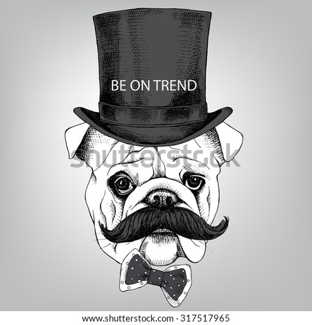 a23b51309f4 Bulldog portrait with mustache in top hat and tie. Vector illustration.