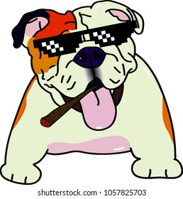 bulldog thug life 420