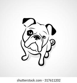 Bulldog - vector illustration