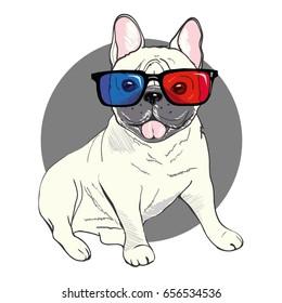 bulldog, vector, illustration