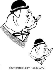 Bulldog. The vector illustration of a gentleman-looking bulldog in bowler hat with cigar.