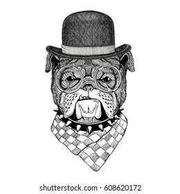 Bulldog vector Image for tattoo, logo, emblem, badge design