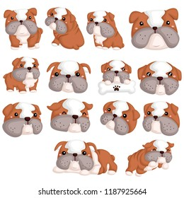 Bulldog Vector Set