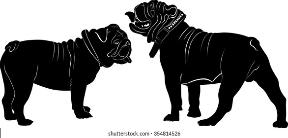 Bulldogs on a white background