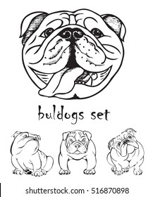 Bulldogs set, black and white graphic vector illustration