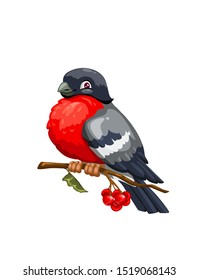 Bullfinch cartoon winter bird sitting on branch of viburnum tree with red berries and green leaf. Vector Eurasian bullfinch with gray and red plumage, wild bird mascot design