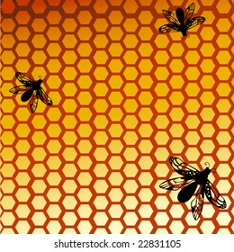 bumble bees / hornet /wasp