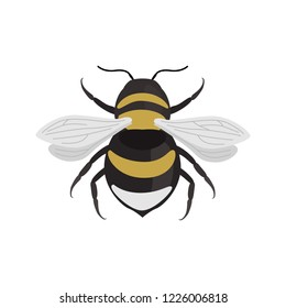 Bumblebee color vector icon. Flat design
