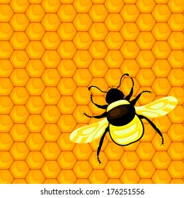 bumblebee and honeycombs. EPS 10. No transparency. No gradients.