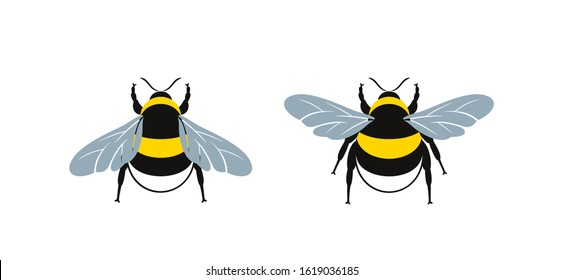 Bumblebee logo. Isolated bumblebee on white background. Wasp