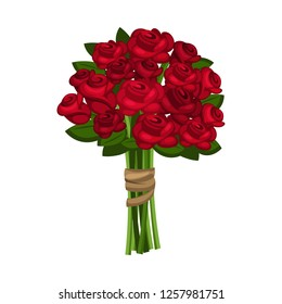 500 Red Rose White Background Pictures Royalty Free Images Stock