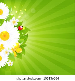 Bunch Of Flowers With Grass And Sunburst, Vector Illustration