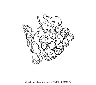 Bunch of grapes. Figure for printing.