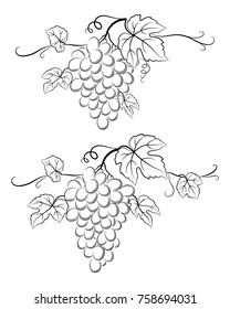 Bunch of Grapes with Leaves and Berries Black Contour Pictograms Isolated on White Background. Vecto