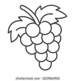 Bunch of grapes thin line icon, fruits and berries concept, cluster of grapes vector sign on white background, outline style icon for mobile concept and web design. Vector graphics.