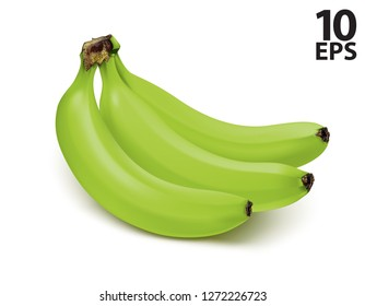 Bunch of green bananas isolated on white background. Vector 3d illustration