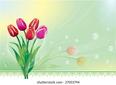 Bunch of tulips over green background