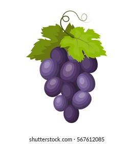 Bunch of wine grapes icon in cartoon style isolated on white background. Spain country symbol stock vector illustration.