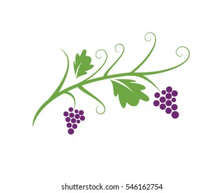 Bunch of wine grapes with leaf icon