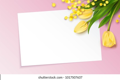 Bunch of yellow tulips and mimosa branch on pink background. Beautiful romantic background with place for text. Vetor illustration
