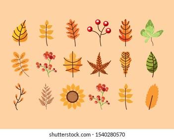 bundle of autumn season leafs and flowers vector illustration design
