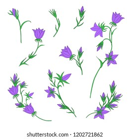 Bundle of Hand Drawn Bellflower Bouquet Isolated on White Background for Custom Pattern Designs and Illustrations for All Media, Web, Textile, Wallpaper. Cute Vector Bell Flowers Templates  Designs.