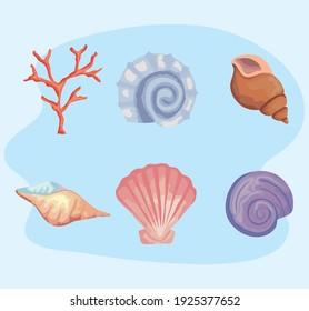 bundle of six sea shells colors set icons vector illustration design