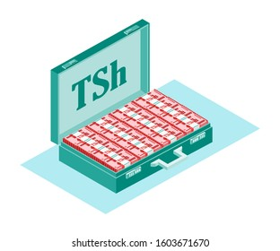 Bundle of Tanzanian Shilling Money inside opened case box vector icon logo illustration and design. Tanzania currency, business, payment and finance element. Usable for digital usage and print.