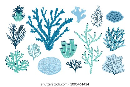 Bundle of various corals and seaweed or algae isolated on white background. Set of blue and green underwater species, marine creatures, sea or ocean flora and fauna. Flat colorful vector illustration