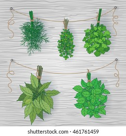 Bundles of thyme, bay leaves, dill, parsley and basil tied with a string.  Bunches of  flavoring  green herbs hanging on grey wooden background.