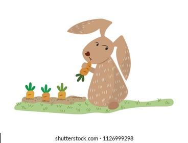 A bunny eating carrot cartoon vector illustration. Cute rabbit with carrot field.