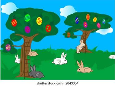 bunny in woods