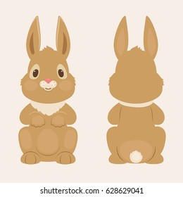 Bunny/rabbit front and back view. Vector illustration